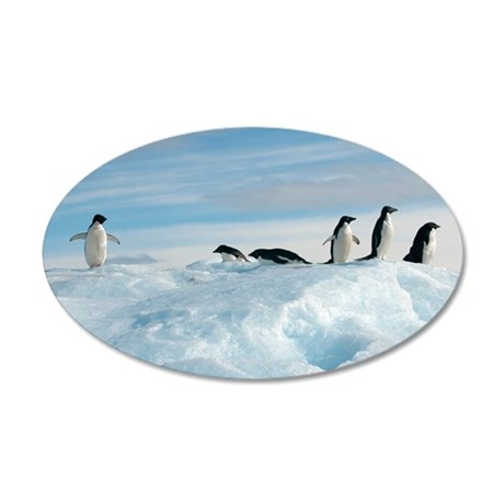 Adelie penguins 35x21 Oval Wall Decal