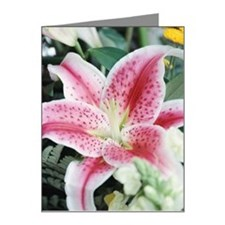 Close-up of lily Note Cards (Pk of 20)