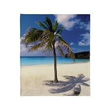 Palm tree on deserted Knip Beach on  Throw Blanket