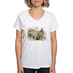 Frillback Pigeons Women's V-Neck T-Shirt