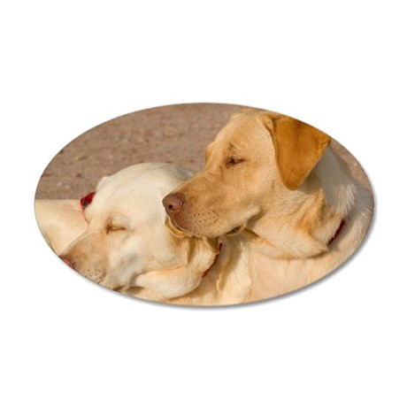 Resting Labs 35x21 Oval Wall Decal