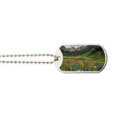 Alpine flowers in Rustler's Gulch Dog Tags
