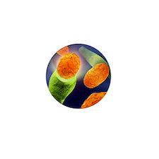 Anthrax bacteria Mini Button