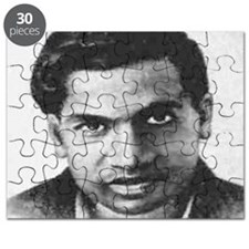 ramanujan 3500 theorems and counting Puzzle