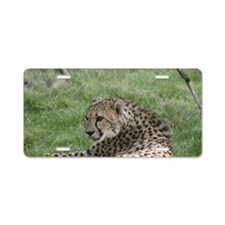 Cheetah 5 Aluminum License Plate