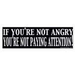Not Paying Attention? Bumper Sticker