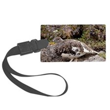 White-tailed Ptarmigan Luggage Tag