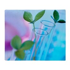 Plant biotechnology Throw Blanket