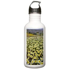 Tidy Tips (Layia platy Water Bottle