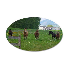 Circle f herd 10 x 8 35x21 Oval Wall Decal