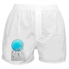 Medical nanorobots, artwork Boxer Shorts