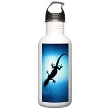 Silhouetted gecko Water Bottle