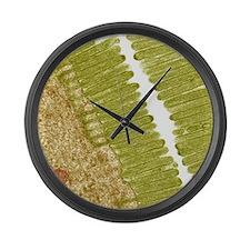 Intestinal microvilli, TEM Large Wall Clock