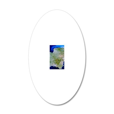 True-colour satellite image  20x12 Oval Wall Decal