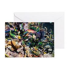 Tropical fish raiding eggs on a reef Greeting Card