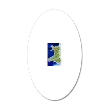 True colour satellite image  20x12 Oval Wall Decal