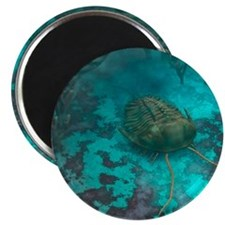 Trilobite on a seabed, artwork Magnet