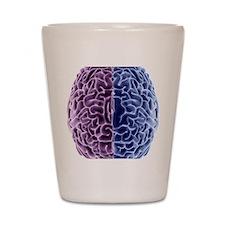 Human brain, computer artwork Shot Glass