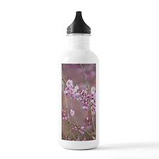 Prunus subhirtella 'Pe Water Bottle