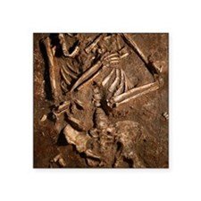 "Neanderthal skeleton, Kebar Square Sticker 3"" x 3"""