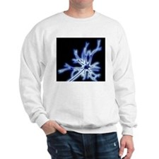 Nerve cell with electrical sparks Sweatshirt