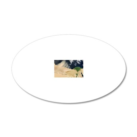 Sandstorm, satellite image 20x12 Oval Wall Decal