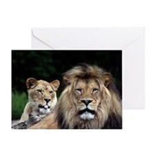 MALE AND FEMALE LIONS 3 Greeting Card