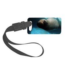 Steller sea lion 5 Luggage Tag