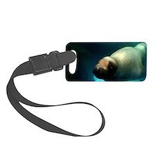 Steller sea lion 3 Luggage Tag