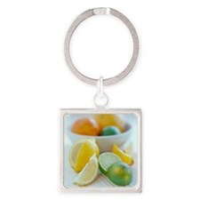 Citrus fruits Square Keychain