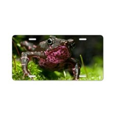 Poisonous toad Aluminum License Plate