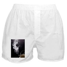 Boiling kettle Boxer Shorts