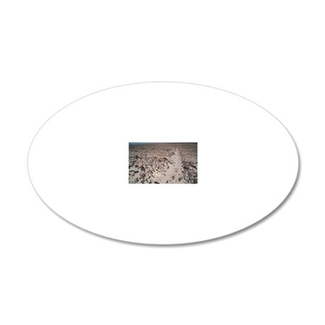 Nazca line 20x12 Oval Wall Decal