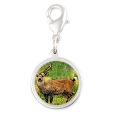 deer  in a beautiful setting Silver Round Charm