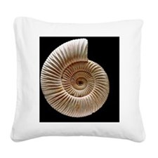 Ammonite Square Canvas Pillow