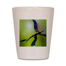 Microraptor dinosaur flying, artwork Shot Glass
