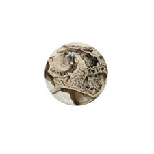 Middle ear anatomy, 1844 artwork Mini Button