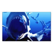Megalodon prehistoric shark Decal