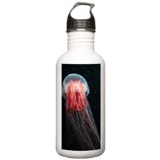 Lion's mane jellyfish Water Bottle