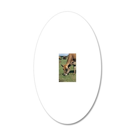 Jersey cow 20x12 Oval Wall Decal