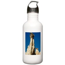 Hoodoo rock formation Water Bottle