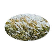 Miscanthus sacchariflorus Wall Decal