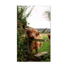 Highland cow Rectangle Car Magnet