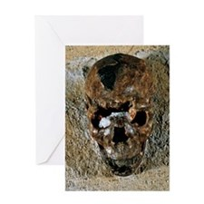 Fossilised skull of a Homo erectus b Greeting Card