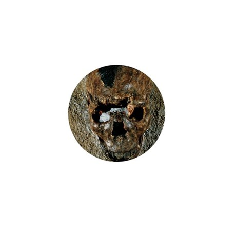 Fossilised skull of a Homo erectus boy Mini Button