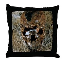 Fossilised skull of a Homo erectus bo Throw Pillow