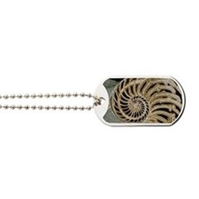 Fossilised nautilus shell Dog Tags