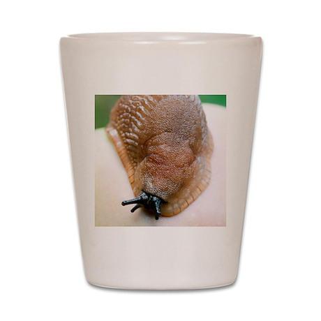 Large black slug Shot Glass