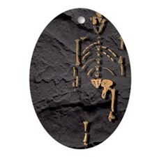 Footprints and skeleton of Lucy Oval Ornament