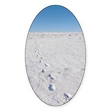 Footprints in snow Decal